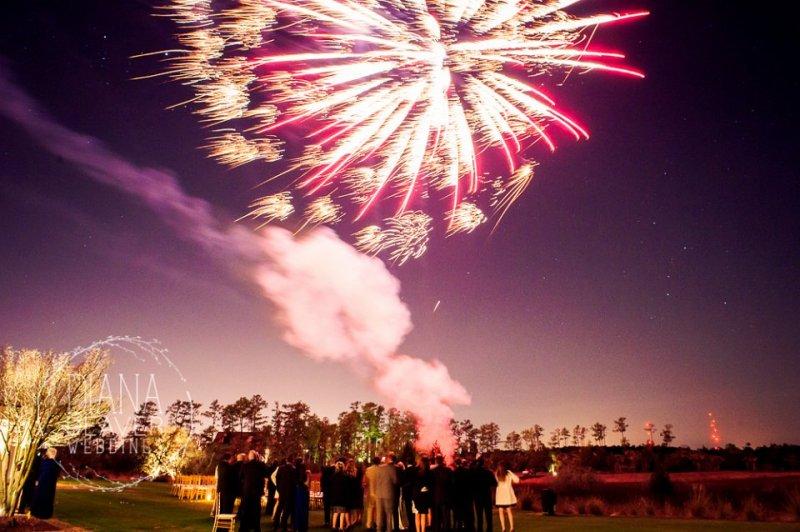 Sparklers Wedding Surprise
