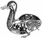 Vaucansons mechanical duck