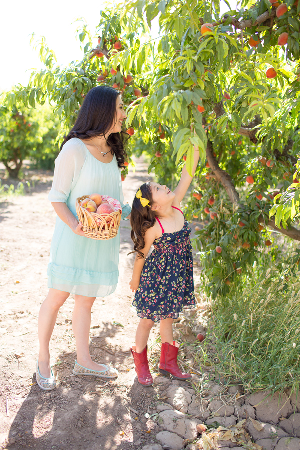 schnepf-farms-peach-orchard-fruit-shoot-picking-diana-elizabeth-photography-005