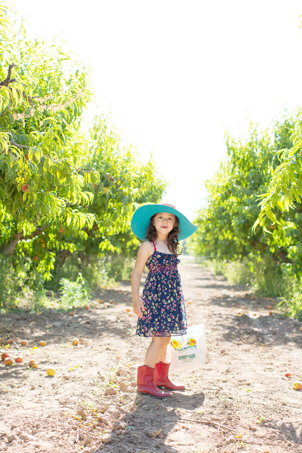 schnepf-farms-peach-orchard-fruit-shoot-picking-diana-elizabeth-photography-010
