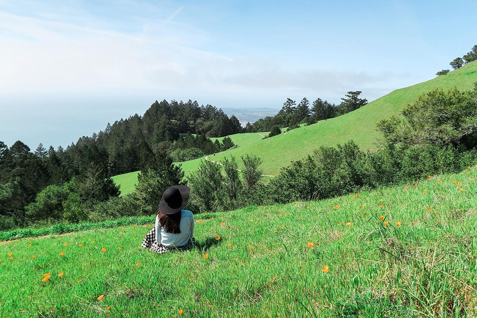 diana-elizabeth-coastal-trail-hike-miles-davis-trail-stenson-beach-0270