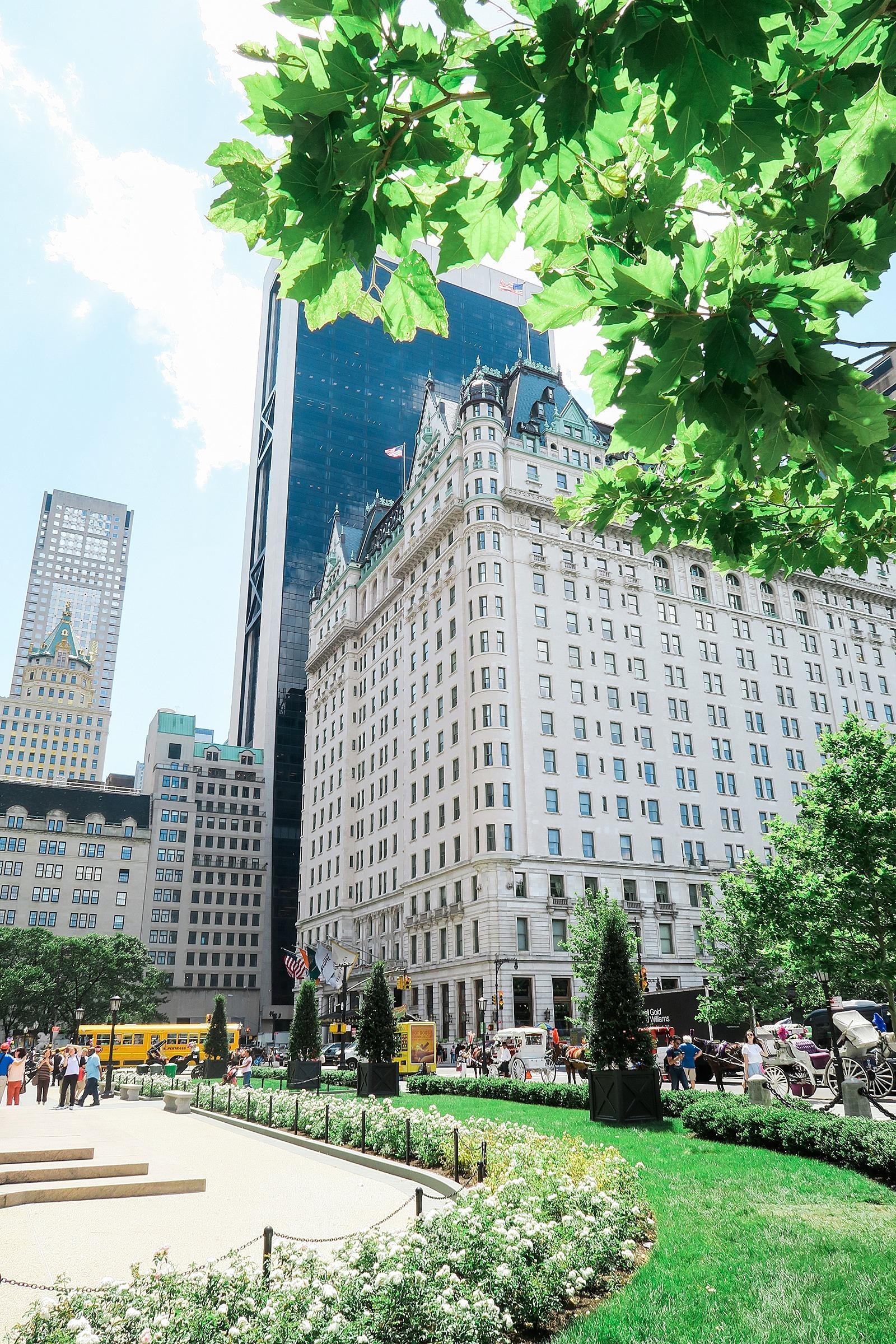 diana-elizabeth-steffen-phoenix-blogger-travel-new-york-brooklyn_0067