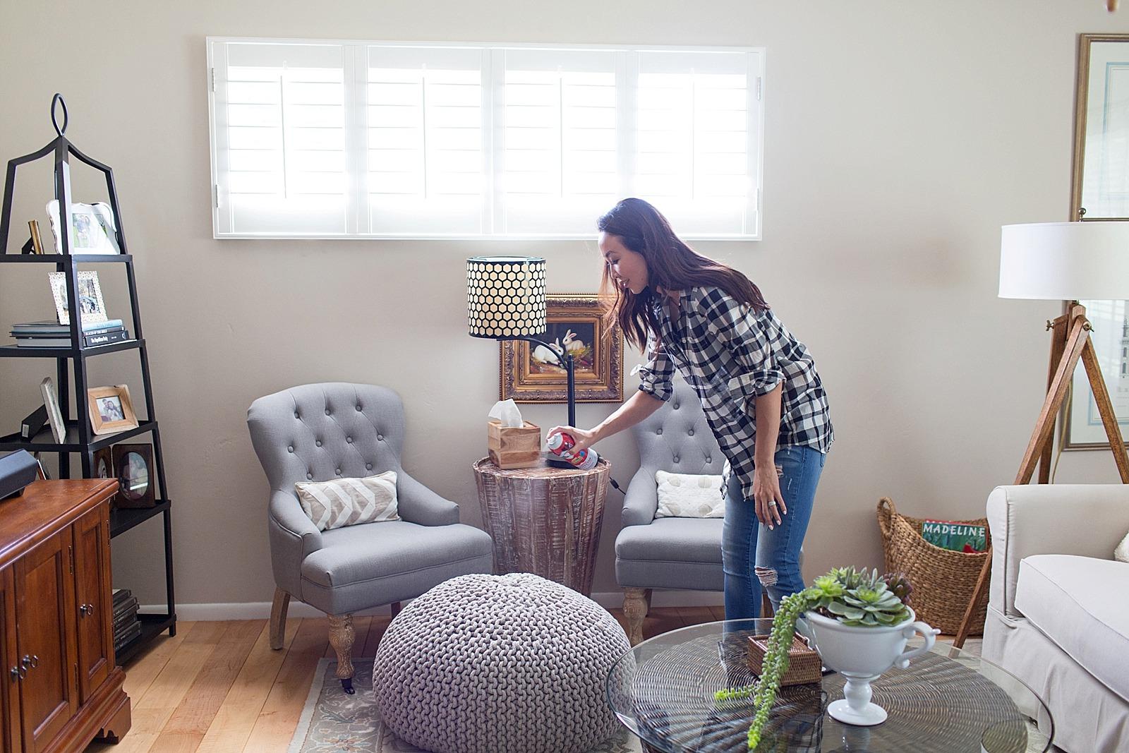 Scotchgard Diana Elizabeth Home Protect Household Couch Spray