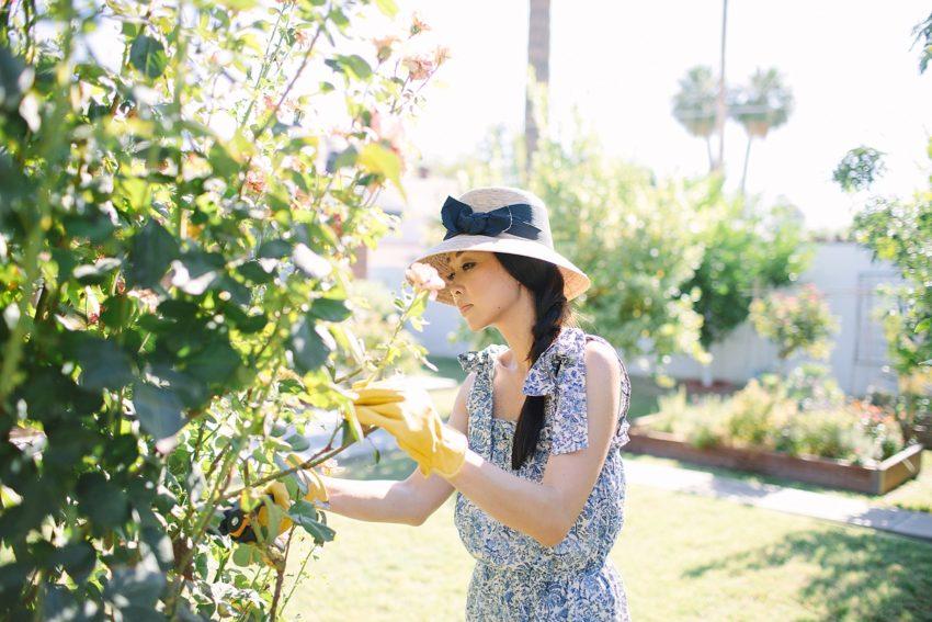 Backyard Pruning + Storing Garden Tools