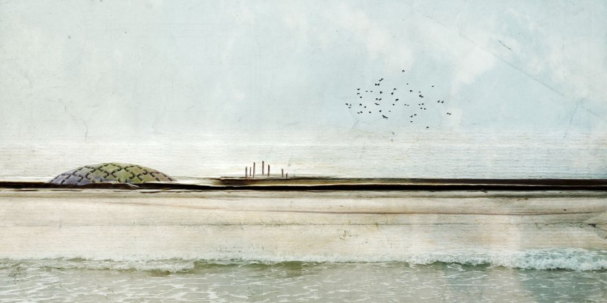 Diana Jane Art, photography, digital art, landscape, seascape, crows, blue, water, wall art