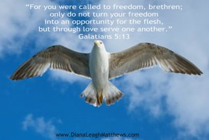 we can be free in and through Christ
