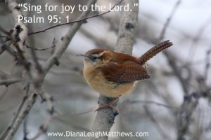 Sing for joy to the Lord