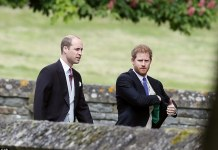 There was however, no sign of Prince Harry's girlfriend Meghan Markle who had been expected to attend the ceremony today Photo (C) GETTY IMAGES