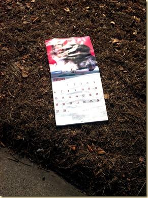 dog_calendar022012