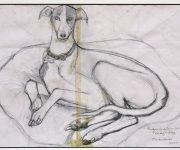 Primmy's Dog