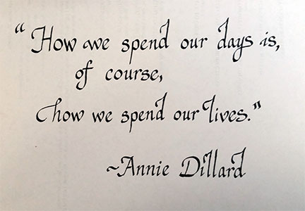 How we spend our days is, of course, how we spend our lives. Annie Dillard