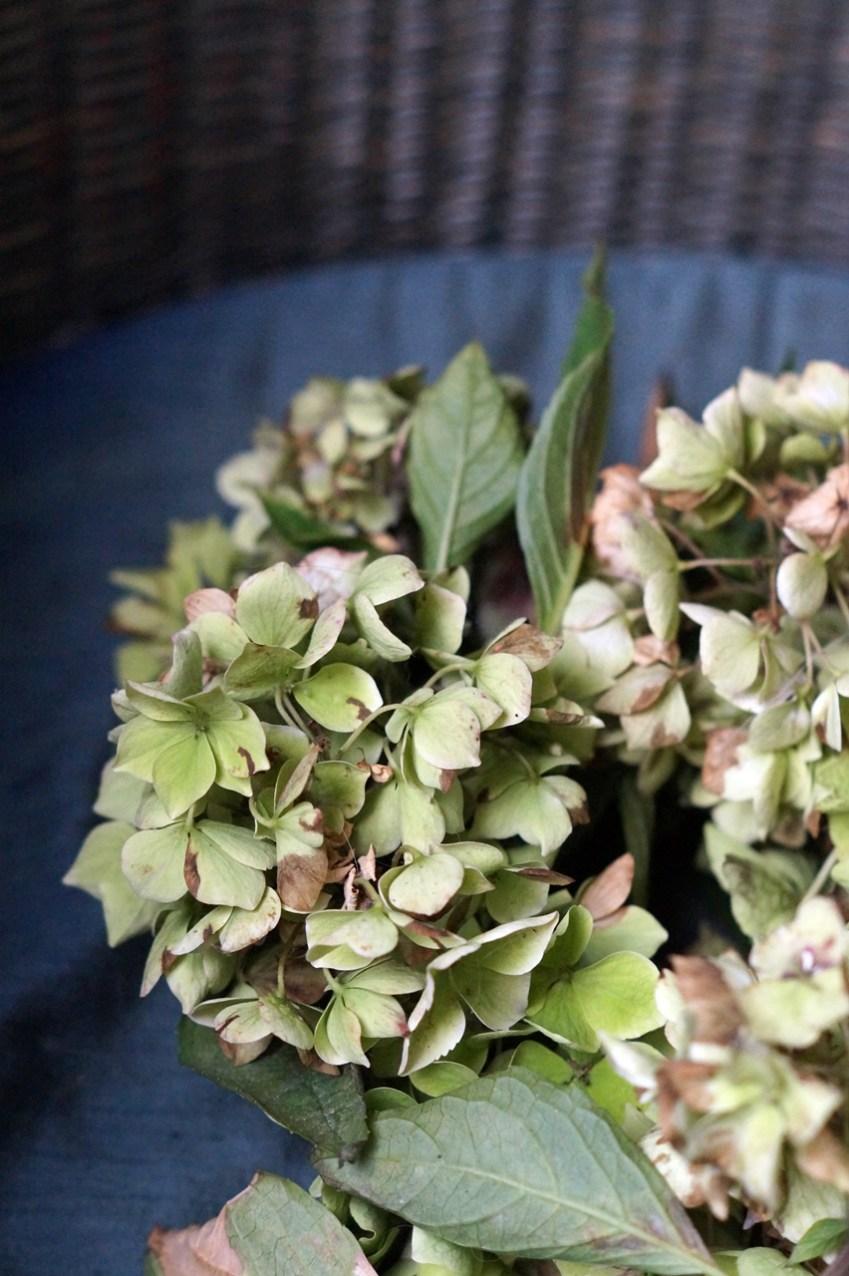 Hortensienblüten als Kranz