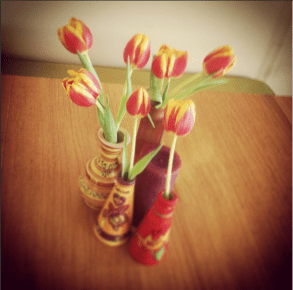 Spotted tulips