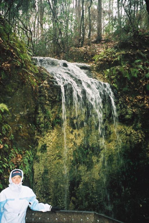 Diane at Falling Waters