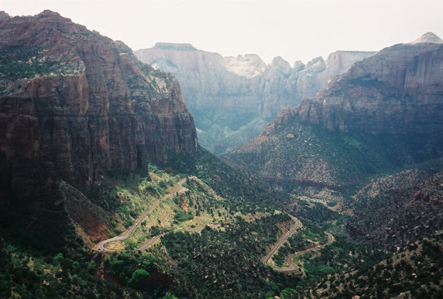 Overlooking Zion Canyon