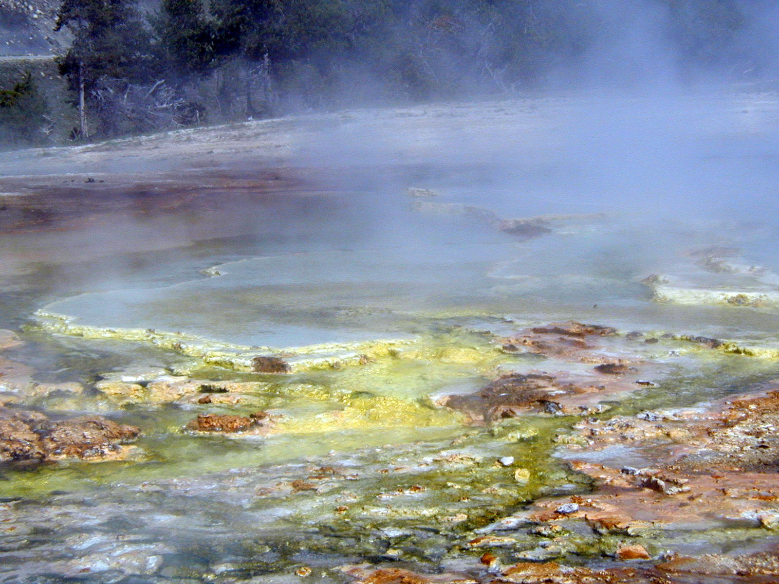 Imperial Geyser's Bacteria Adds Color