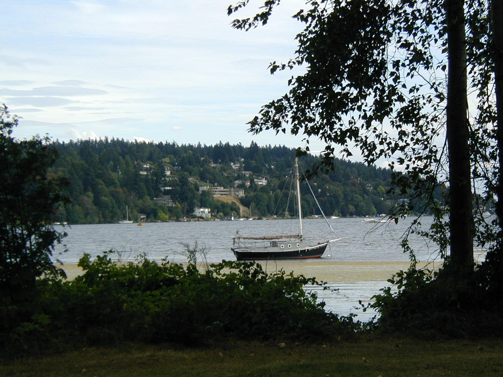 Biking around Lake Washington