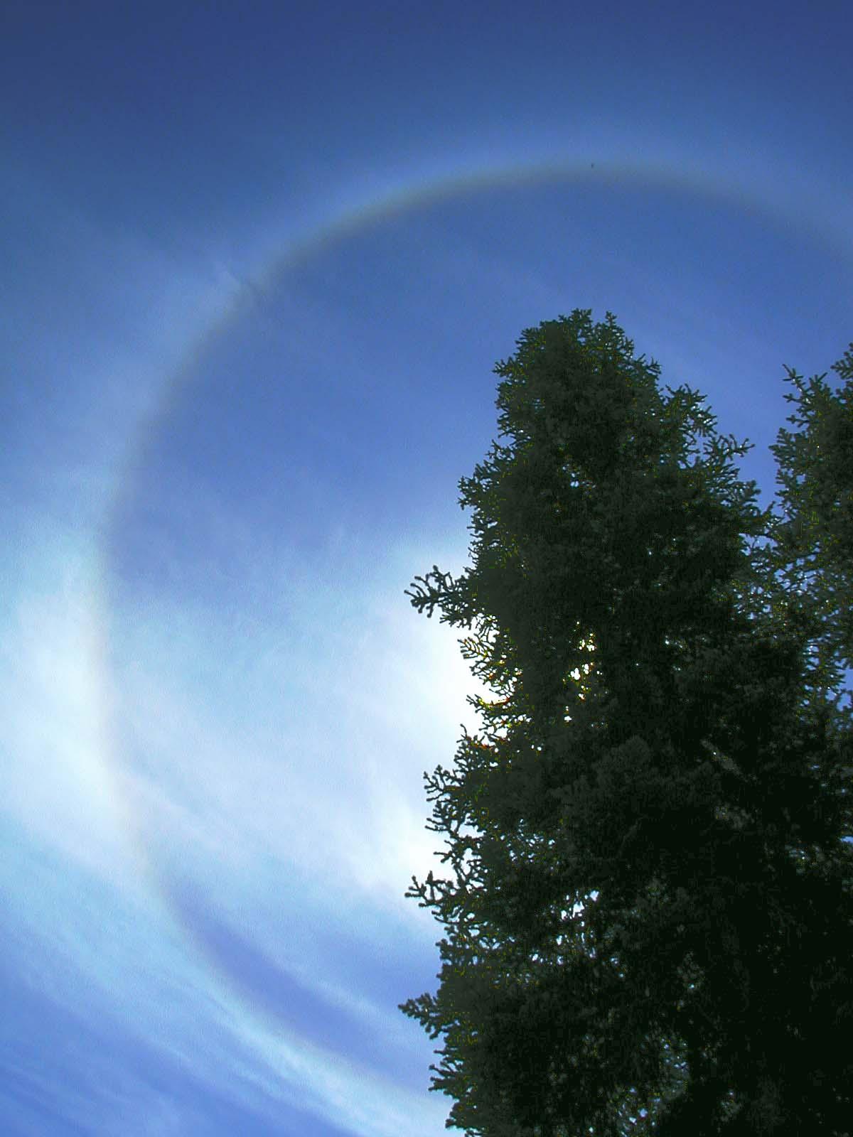 Solar Circle