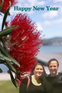 Photo: pohutukawa tree/Oriental Bay by Nick Payton