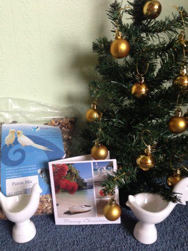 Ingrid's Secret Santa present.
