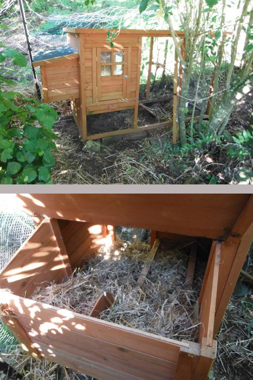 Chicken house - view from the outside and with the nest box lid open.