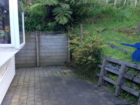 Dark corner, bare clay wall with bush, in between the cement retaining wall and a wooden retaining wall in the back.