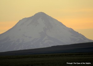 A zoomed view of Mount Hood from our campground just before sunset