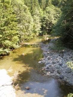Harris Creek - Bridge 2 - View East on Harris Creek Mainline approx 28km NE of Port Renfrew
