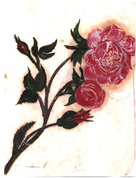 Roses on Parchment