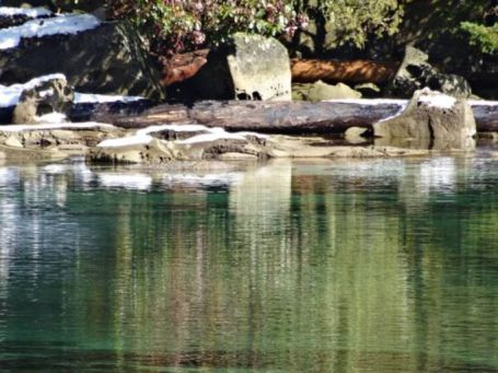snowy_winter_seaside_rocks_green_water_reflection