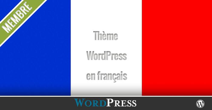 Comment mettre son Thème WordPress  en français