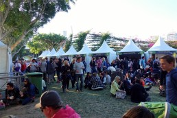 Regional Flavors Wine and Food Festival