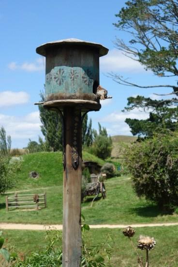 Hobbiton, NZ 050