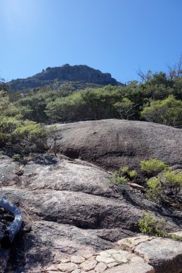 Looking up on the approach to the Wineglass Bay lookout. Do you mean that we have to go all the way up there?