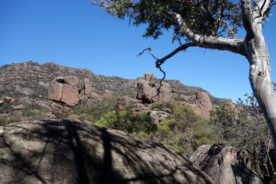 Nearing the top at Wineglass Bay Hike
