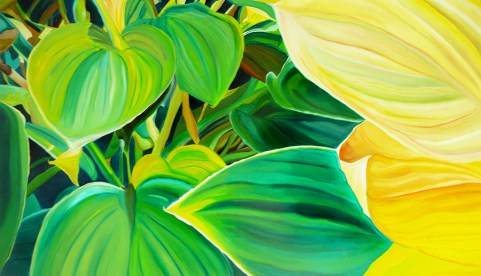 Happy Hostas 36x70
