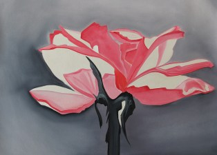 Pink and Grey Rose 18x24