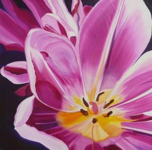 Terrific Tulip 36x36