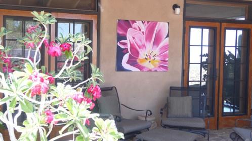 Terrific-Tulip-Garden-Art