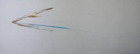 Kittiwake Kiting Svalbard 24x60