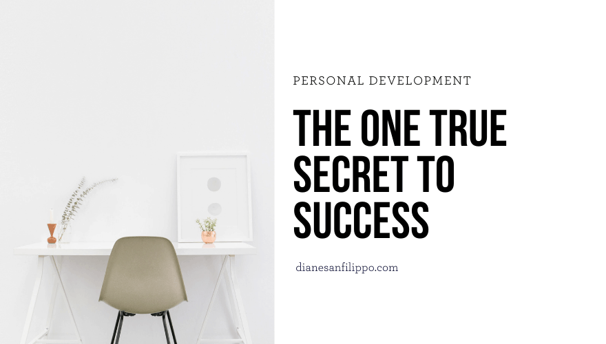 The one true secret to success. | Diane Sanfilippo