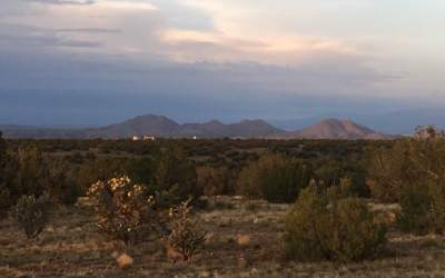 Finding an introvert's paradise in New Mexico
