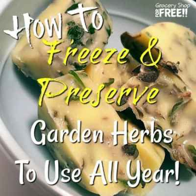 How To Dry Herbs, Freeze, And Preserve Garden Herbs To Use All Year!