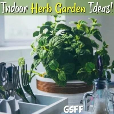 Indoor Herb Garden Ideas!  Get Started Today!