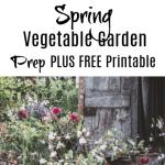 Spring Vegetable Garden Prep PLUS FREE Printable!