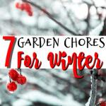 7 Garden Chores To Do Before Winter