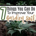 7 Tips To Improve Garden Soil