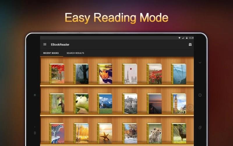 Profesional E-Reader
