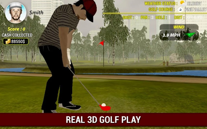 Profesional Golf Spin 3D