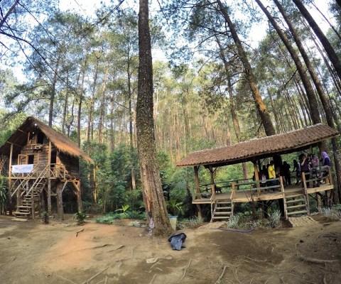 Menikmati Sunyi Bandung di Rumah Pohon dan Bukit Bintang